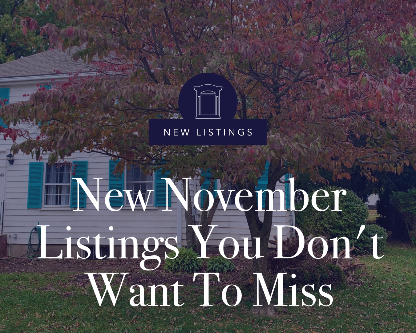 New November Listings You Don't Want to Miss